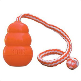 http://www.amazon.com/KONG-Aqua-Dog-Large-Orange/dp/B0002AR150