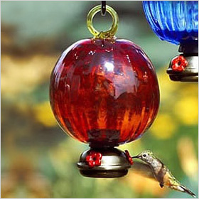 Red Ruffle Hummingbird Feeder