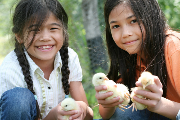 Girls with pet chickens