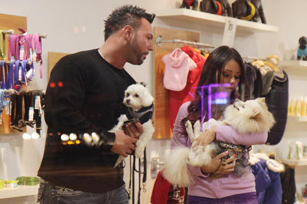 JWoww & Roger plan own show