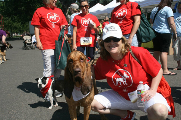 The Animal Cancer Foundation Walk