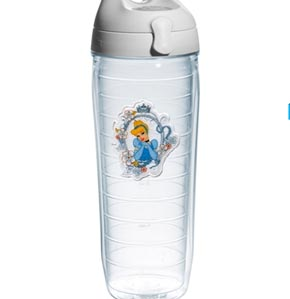Cinderella water bottle