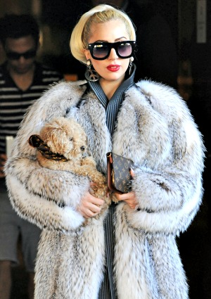 "Lady Gaga wears ""dumb furs"" in a heat wave"