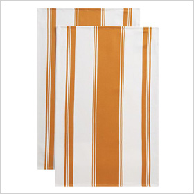 Kitchenette Orange Dishtowels