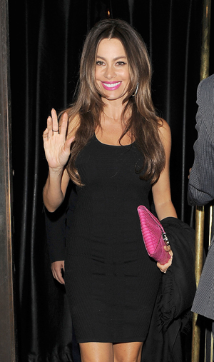 Sofia Vergara shows off engagement ring