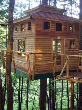 Vertical Horizons Treehouse Paradise Bed & Breakfast Inn