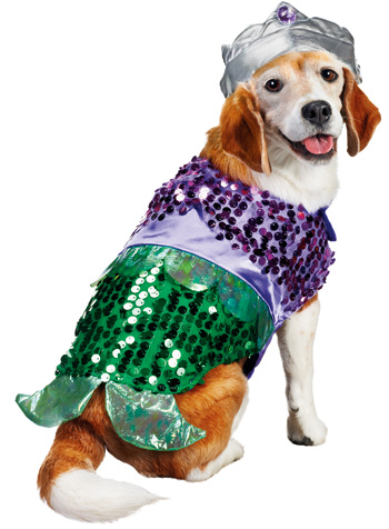 Mermaid Halloween Dog Costume