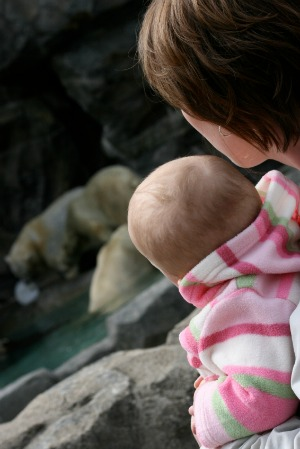 Zoo day with your baby