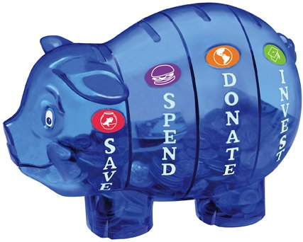 money saavy pig bank