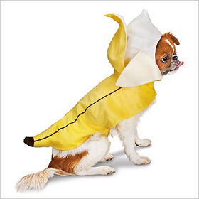 Petco banana costume for dogs