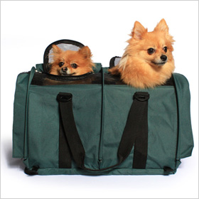 Sturdibags Divided pet carrier