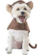 paw-fect Halloween