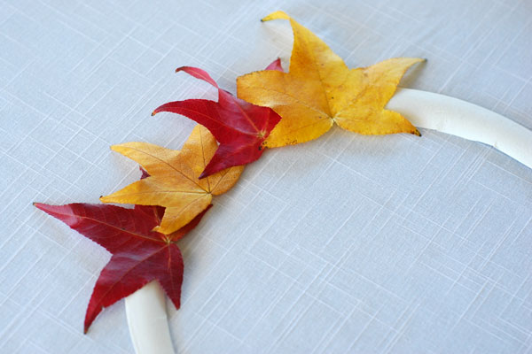 Gluing leaves to the paper plate