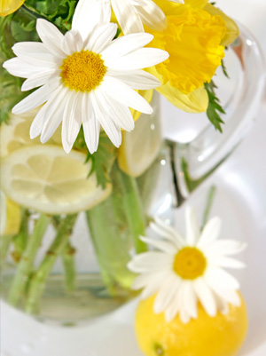 Lemon and daisy vase