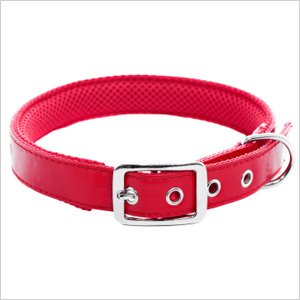 Match your dog's collar to your style