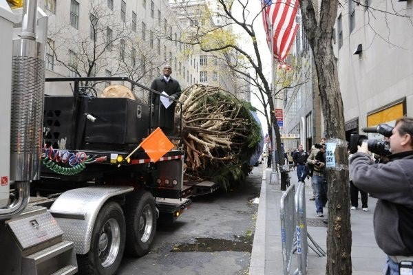 Al Roker with the 2013 Rockefeller Center Christmas tree