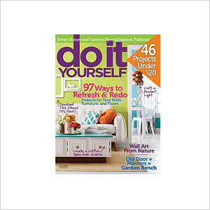 Subscription to a DIY magazine
