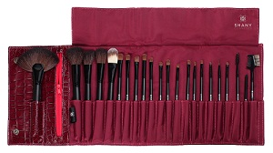 Shany brush set