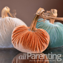 Velvet pumpkins