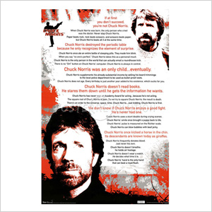 Chuck Norris Poster