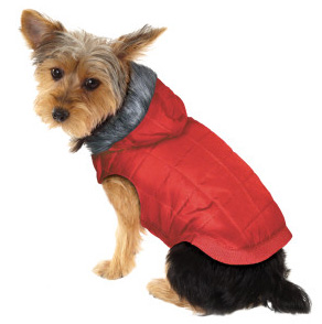 Martha Stewart Pets™ clothing from PetSmart