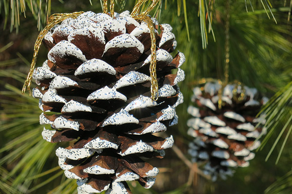 Billie 39 s life snowy pine cone ornaments Homemade christmas decorations using pine cones