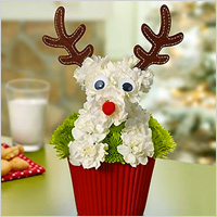 Rudolph-themed floral arrangement