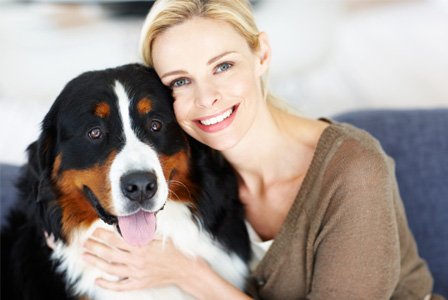 Determine the best care for your dog