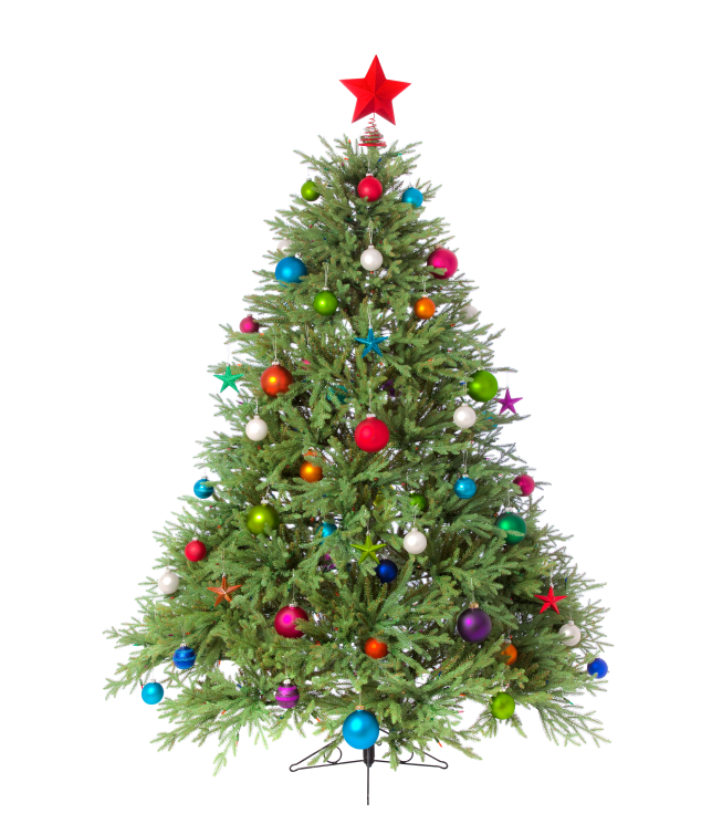 Christmas Tree Pictures to Pin on Pinterest - PinsDaddy