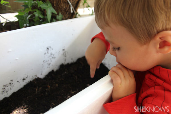 Get wriggly with a DIY worm farm