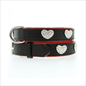 red black leather collar and leash set