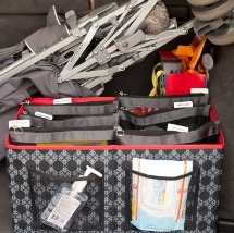SugarSnap Car organizer