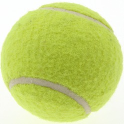 isolated tennis ball