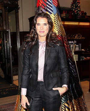 Brooke Shields joins Army Wives
