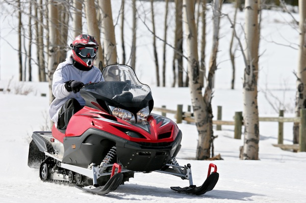 A man rides a snowmobile next to Aspen trees.