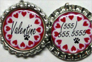 Pet ID tag