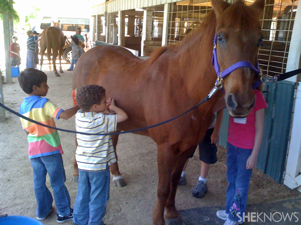 Field Trip - Horse Stables