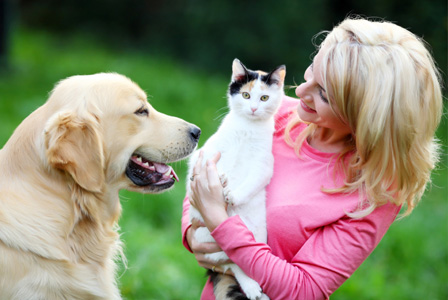 Woman introducing cat to dog