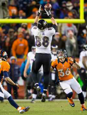 Baltimore Ravens Dennis Pitta