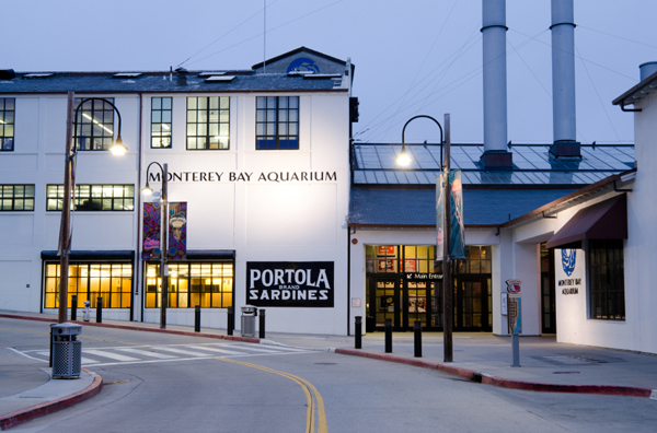 Monterey Bay Aquarium - Cannery Row