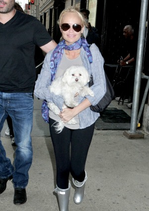 Airline tells Chenoweth no dogs on board