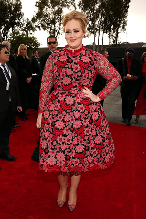 Adele in Valentino at the 2013 Grammys