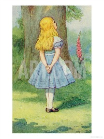 Alice and Wonderland print