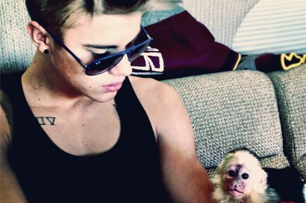 http://cdn.sheknows.com/articles/2013/03/Justin-Bieber-Monkey-confiscated.jpg