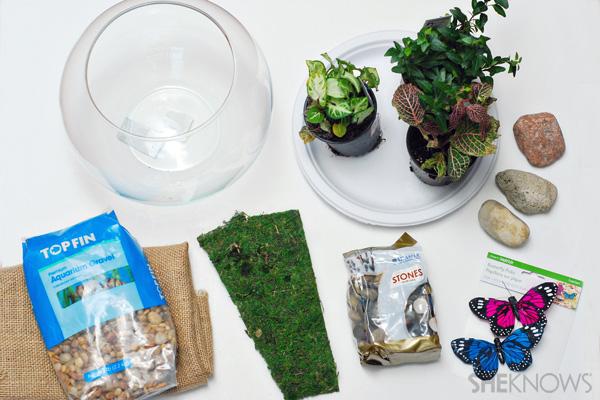 Bring nature indoors with this terrarium