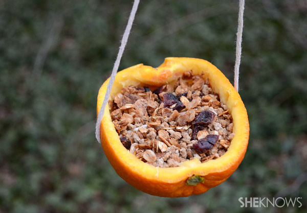 Orange peel bird feeder