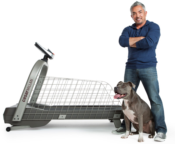 Ceasar Millan's pet treadmill