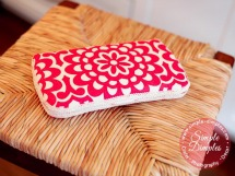 pretty wipes case