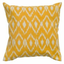 Ikat home pillows