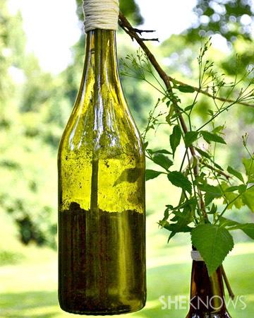 Wine & beer bottle plant holder